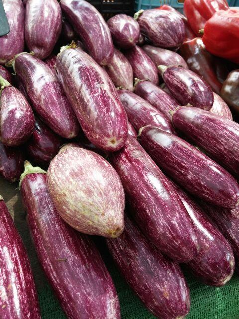 Listada de Gandia - Aubergine, die etwas süßer schmeckt