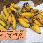 Mercato dos Lavradores: Im Untergeschoss die Bananen für 3,50€ das Kilo