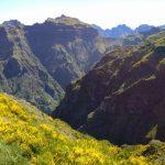 Madeira und die Berge..
