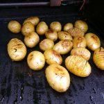 Die Rosmarin-Fächerkartoffeln sehen schon gut aus