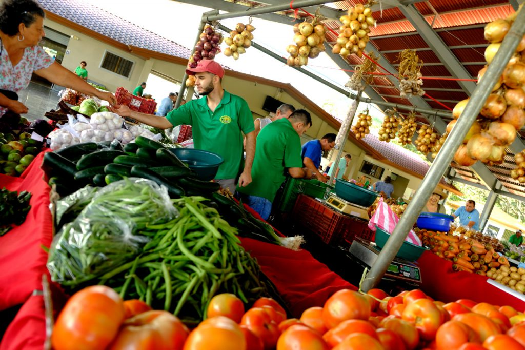 Bauernmarkt in Costa Rica - eine prächtige Auswahl an Obst und Gemüse
