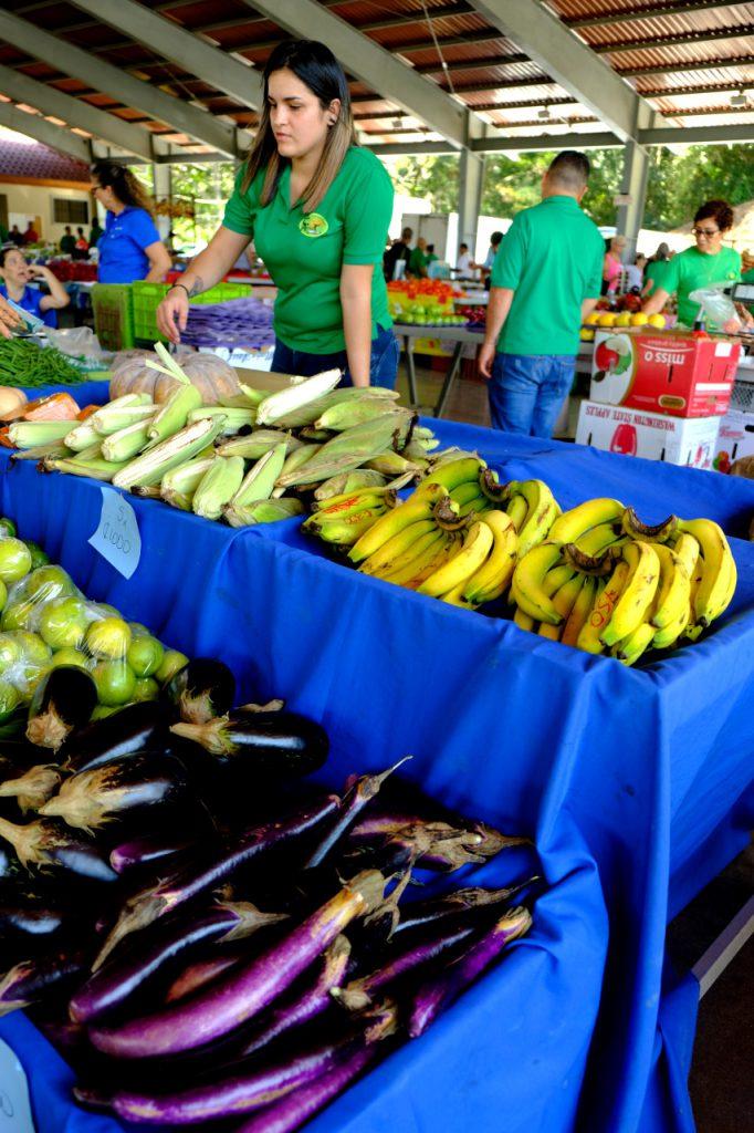 Fast alles wächst zu jeder Jahreszeit in Costa Rica